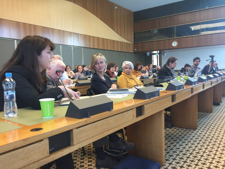 Social Work representatives speaking at the United Nations in Geneva
